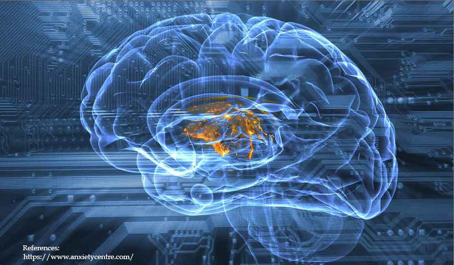 mental-training-changes-brain copia