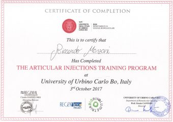 2017-10-03-The articular injections training program